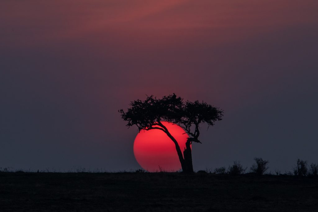 The sun sets over another day of Mara River crossings in Kenya (Image by Inger Vandyke)
